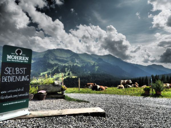 Beliebtes Ziel: Die Weißenfluh-Alpe.