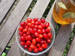 Fruchtiger Genuss mit I-Tüpfelchen