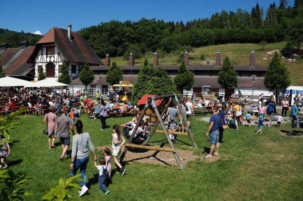 Über 3000 Besucher kamen heuer zum Fest. lebenshilfe