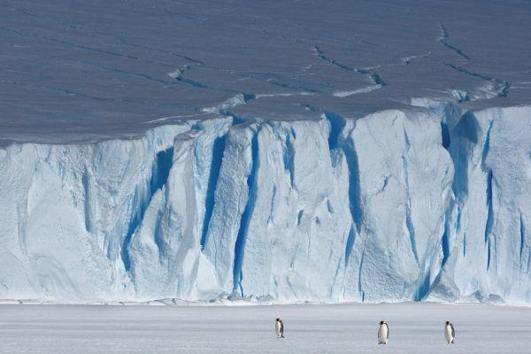 In der Antarktis liegt der kälteste Punkt der Erde. Reuters