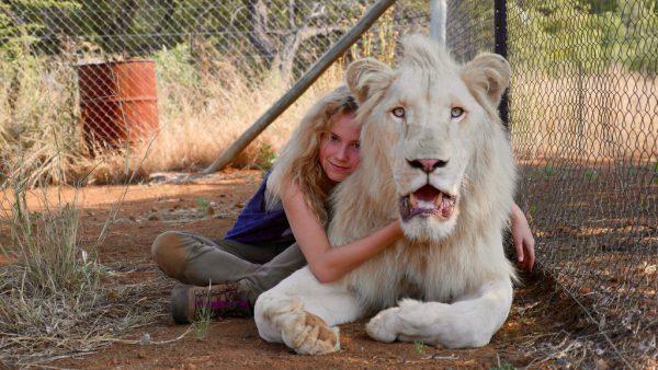 Der Löwe Charlie wird zu Mias bestem Freund. Studiocanal GmbH