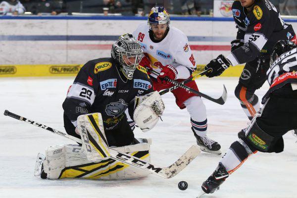 Dornbirns Rasmus Rinne brachte die Salzburger zur Verzweiflung und war beim 2:1-Auswärtssieg der Vater des Sieges.GEPA