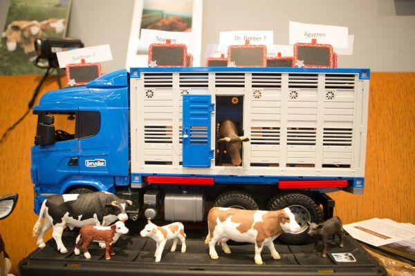 Beim Bürgerforum gegen Tiertransporte und Veränderungen in der Landwirtschaft waren einige Vertreter aus der Politik zugegen.Hartinger (4)