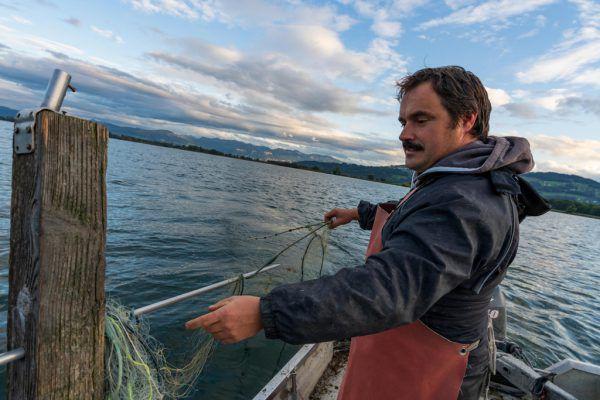 Albert Bösch, Obmann der Vorarlberger Berufsfischer, setzt längst auf alternative Fischarten, Hauptsache regional. Er bleibt den Wildfängen treu.