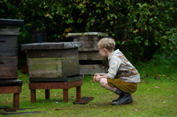 Eine Liebesgeschichte und Honigbienen stehen im Fokus. Neil Davidson (2)