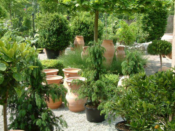 Herbstpflanzungen profitieren im Frühjahr.Rammel (3)