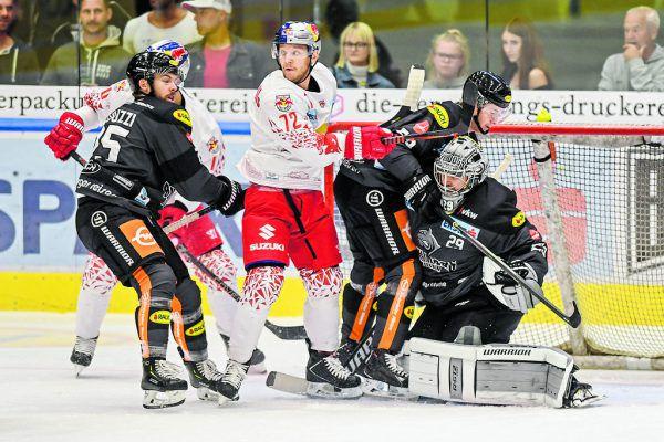 Rasmus Rinne hielt gegen Salzburg, was zu halten war. GEPA/Lerch