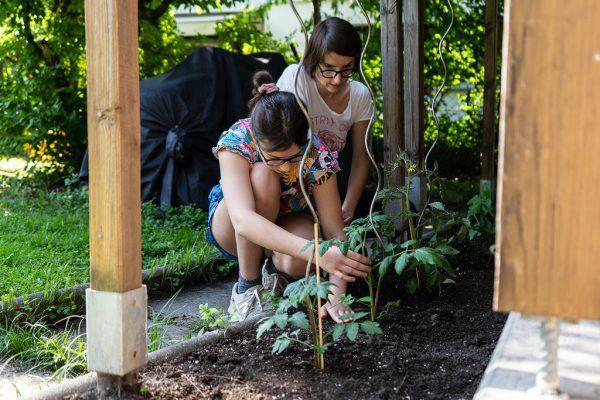 Im Garten wurde ein Tomatenhaus gebaut.Kinderdorf