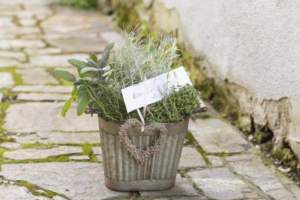 Floristen kreieren auch zum Vatertag kreative Überraschungen.Blumenbüro Österreich