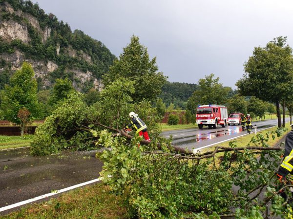 Die Feuerwehr Götzis musste zu mehreren Einsätzen ausrücken.Feuerwehr Göthis (3)