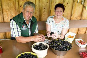 Obstbörse: Vermitteln statt wegwerfen