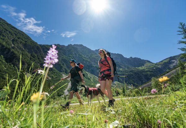 Wandern in den heimischen Bergen steht heuer bei vielen hoch im Kurs.Stiplovsek