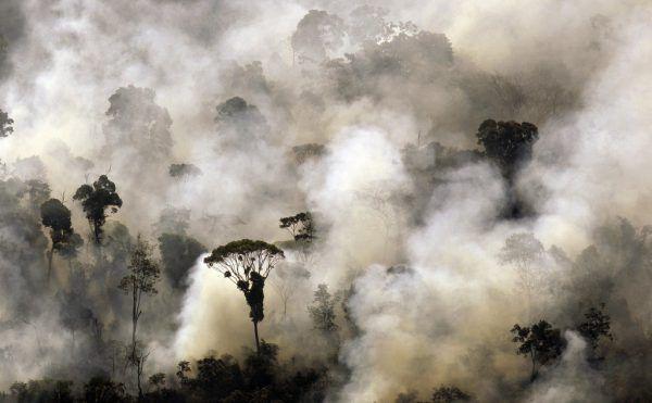 Brandrodungen in den Regenwäldern.Reuters