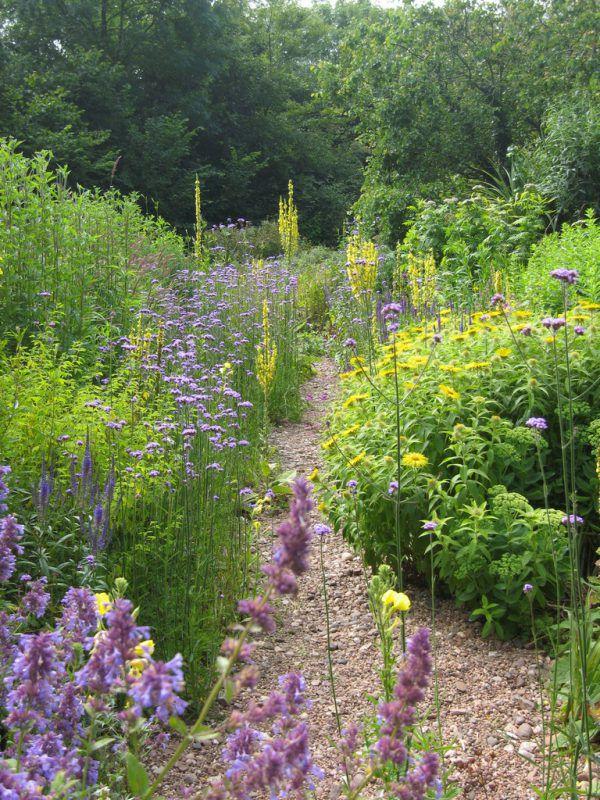 Die Natur hält Einzug in Ihren Garten.Stephan Brenneisen (5)