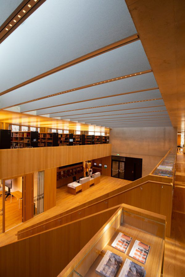 Die Stadtbibliothek. Klaus Hartinger
