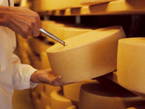 Vorarlbergs Käse ist im In- und Ausland beliebt.LWK (7)