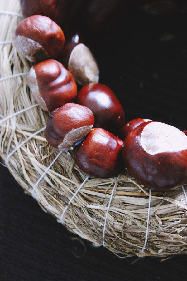 Jetzt ist die richtige Zeit für Kastaniensammeln.Jasmine Hörhager (3)