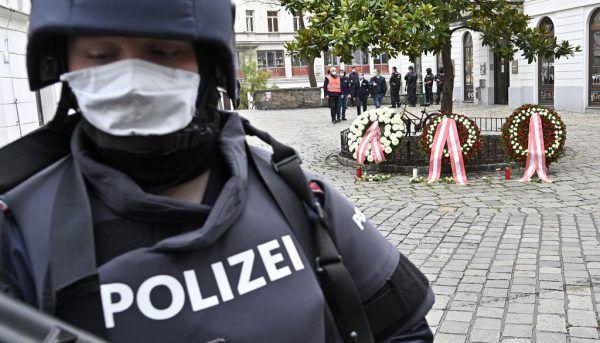 Johannes Rauch will halbautomatische Waffen verbieten. APA, Lerch
