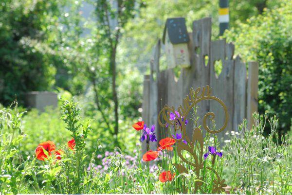 Ein naturnaher Garten in Rankweil. MG rankweil