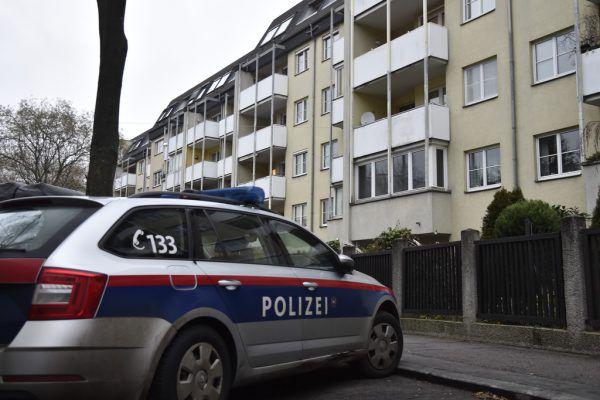 Die mit einem Messer (kleines Fotos) bewaffnete Frau wohnte in Wien-Hitzing. apa, LPD Wien