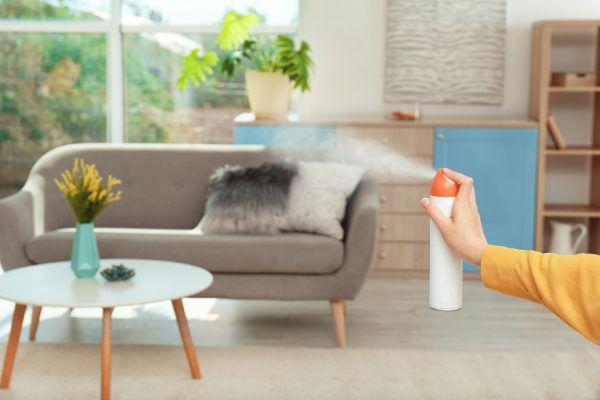 Lufterfrischer liegen im Trend, und es gibt sie in zahlreichen Varianten.apa, Shutterstock (2)