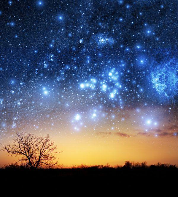 Zu keiner anderen Jahreszeit glänzt der Himmel mit so vielen Sternen. Shutterstock