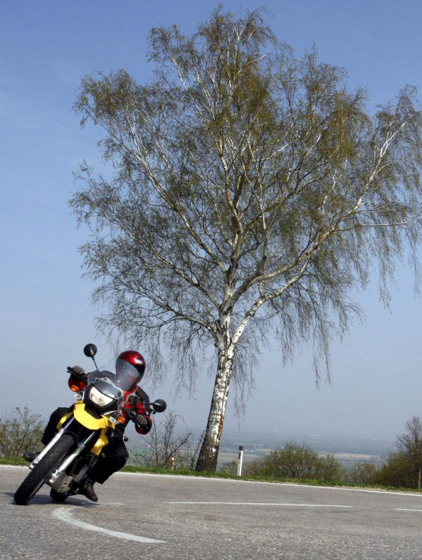 Bald startet die Motorrad-Saison. APA