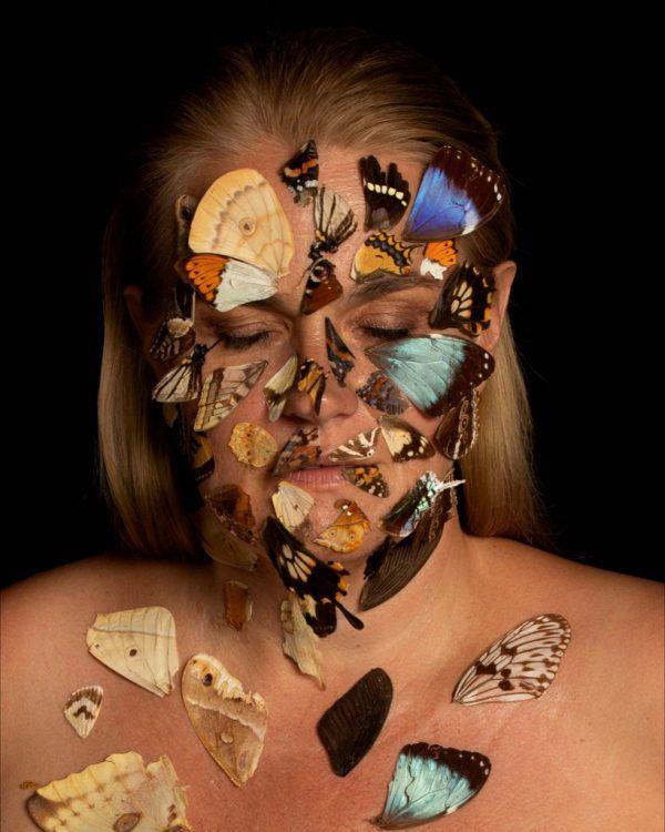 """Butterfly Biodiversity"". Bettina Bohne"