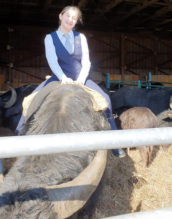 Santina Suter auf einem Wasserbüffel des Heldernhofes.GASCHT