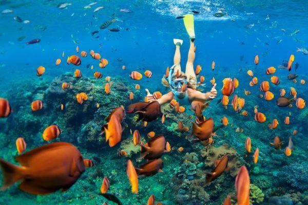 Die Malediven stehen ganz oben auf der Fernreisen-Liste. Begleitet von Kuba, Dubai, Mauritius und den Seychellen.Shutterstock