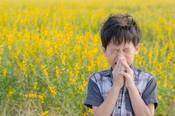 Ein Pollentagebuch kann hilfreich für die Therapie sein.Shutterstock