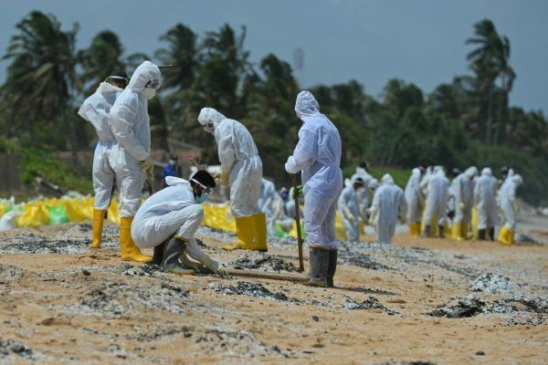 Tote Tiere, Trümmer und Mikroplastikgranulate wurden an die Strände geschwemmt . AP