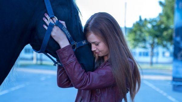 Ari ist von Pferd Orkan angetan.