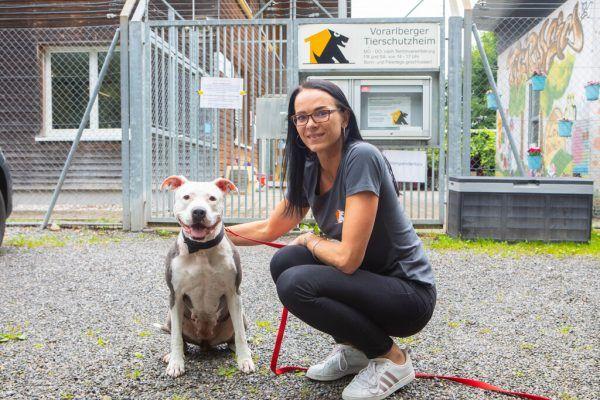 Marion Gögele vom Vorarlberger Tierschutzheim in Dornbirn mit Pit-Bull-Mix Emma. Auch die sechsjährige Hündin ist noch auf der Suche nach einem liebevollen Zuhause.Hartinger, Handout/Vorarlberger Tierschutzheim (8)