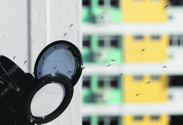 Mücke ist nicht gleich Mücke, erklärt der Experte. Es wird zwischen knapp 40 Arten und vier Lebensraumgruppen unterschieden.