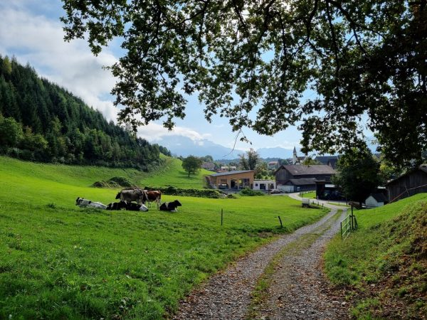 Großes Bild: Zurück aufs Dorf Röns blickend, im Wolkenhut der Hohe Fraßen und dahinter die Davenna. Oben: Das Heidenhaus. Hertha Glück