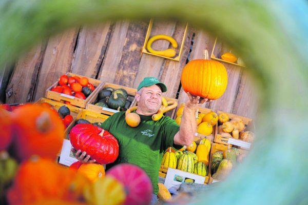 """""""Ländle-Bur"""" Andreas Kalb betreibt eine Landwirtschaft mit Gemüse, Kühen und Schafen. Hartinger"""