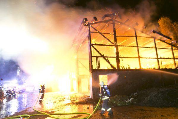 Lagerhalle eines Schweinemast- und Schlachtbetriebs brannte ab. mathis